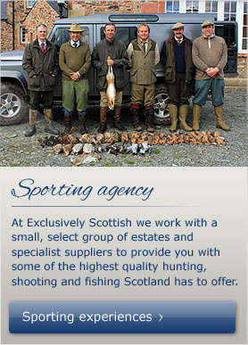 Visit the Exclusively Scottish Sporting Agency to book a shooting experience now
