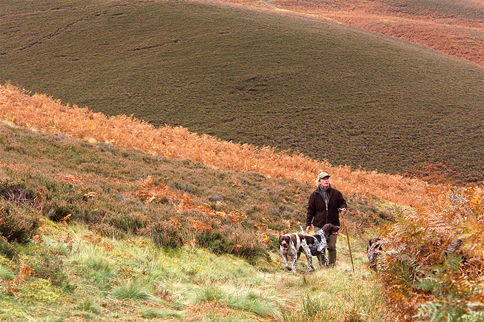 Partridge and grouse shoots in the Scottish Borders