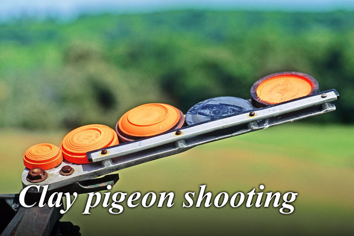 Enjoy a clay pigeon shooting experience