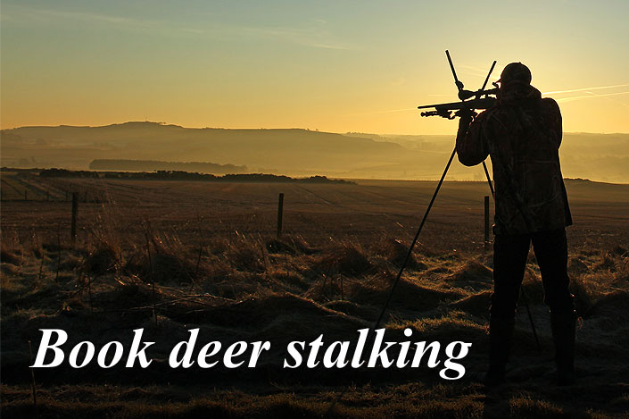 Book or customise a deer stalking package