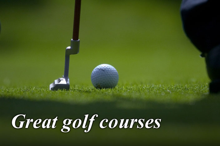 Arrange a day at a local golf course